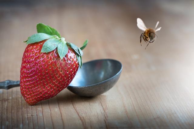 strawberry-1367814_640