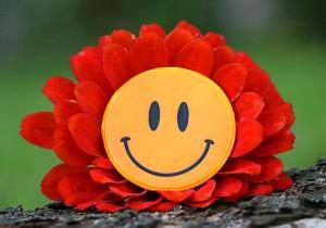 smile-1539196_640